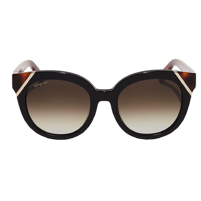 6a83df3c0 Óculos de Sol Feminino Salvatore Ferragamo - SF836S.006 - SF836S.006 ...