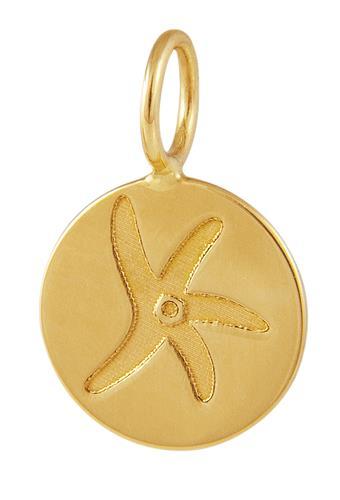 Pingente de Ouro 18k de Starfish